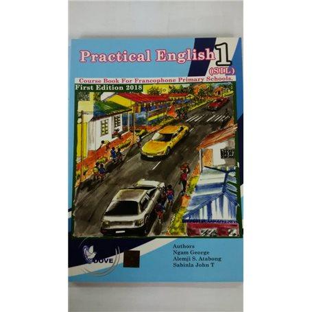 Practical English | Niveau  SIL