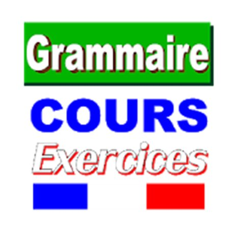 Grammaire Cours et Exercices (sans internet)