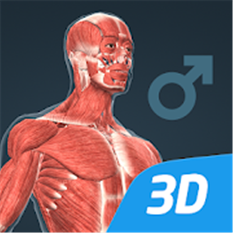 Le corps humain , 3D éducative